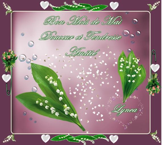 bon mois de mai-douceur et tendresse-amitié-lynea