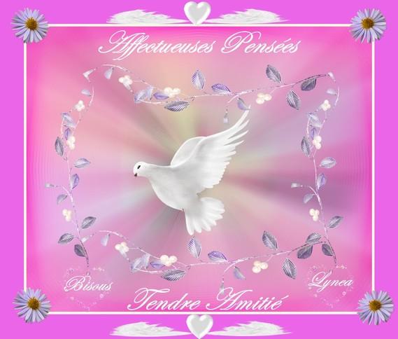 affectueuses pensées-tendre amitié-bisous colombe de lynea