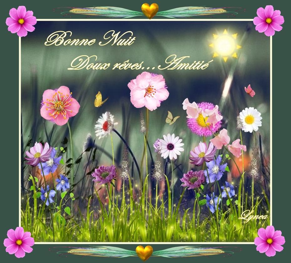 bonne nuit-doux rêves les fleurs de lynea - BONNE NUIT - lynea18 ...