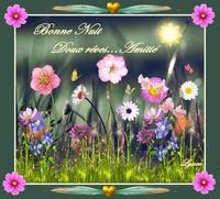 bonne nuit-doux rêves les fleurs de lynea