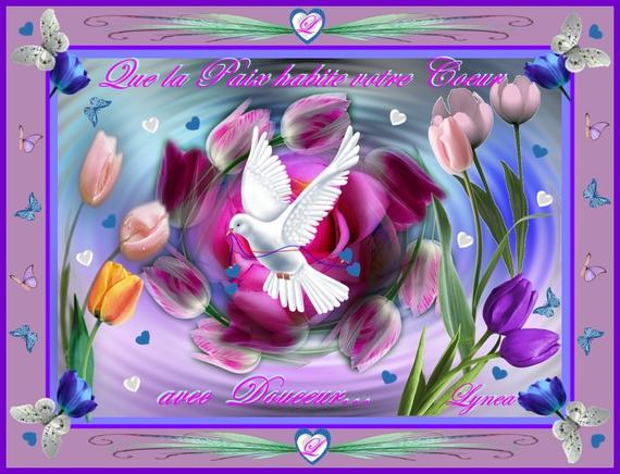que la paix habite votre coeur avec douceur-colombe -lynea