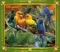 bonjour-douce amitié-oiseaux-lynea