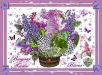 bonjour -amitie-bisous-lilas de lynea