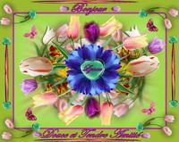 bonjour-douce et tendre amitié-les tulipes-lynea