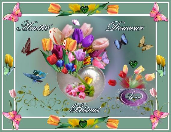amitié-douceur-tendresse fleurs de lynea