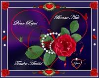 bonne nuit-bon repos-tendre amitié-rose-lynea
