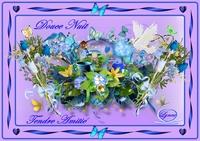 douce nuit-tendre amitié fleurs et divers-lynea