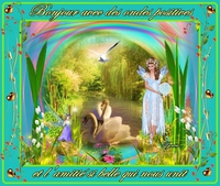 bonjour avec des ondes positives et la belle amitié...cygnes de lynea