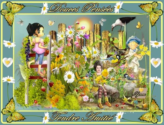 douces pensées-tendre amitié fleurs de lynea