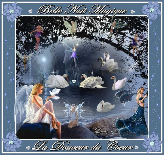belle nuit magique-la douceur du coeur de lynea
