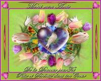 merci mon amie-paix et sérénité-douceur-les tulipes de lynea