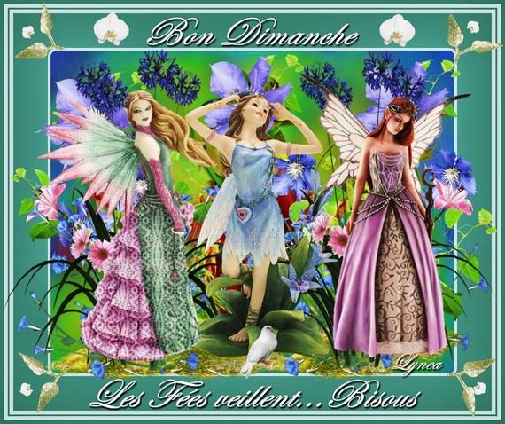 bon dimanche-les fées veillent-lynea