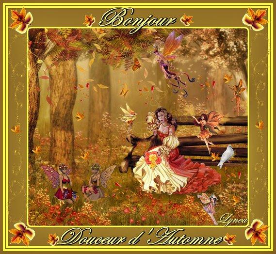 bonjour-douceur d'automne de lynea