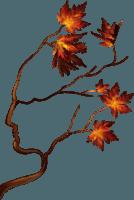 déco feuilles----3---