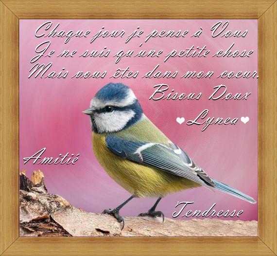 pensées pour vous chaque jour-bisous et amitié de Lynea