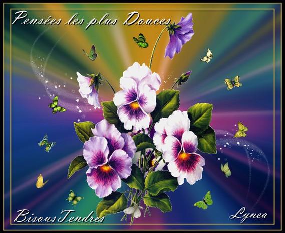 Pensées les plus Douces- Bisous Tendres de Lynea