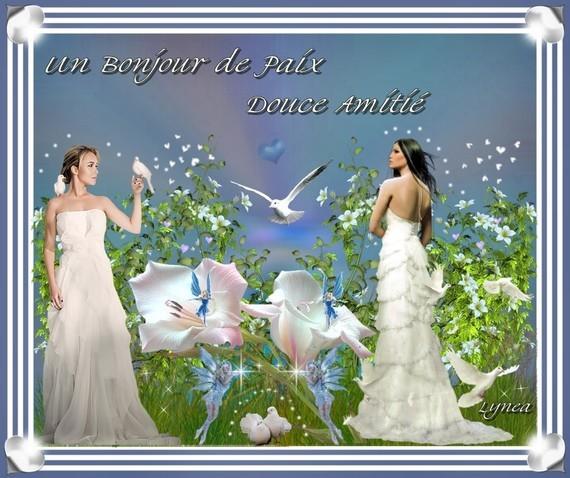 Bonjour de Paix-douce amitié de Lynea