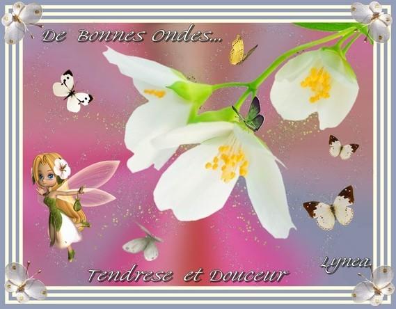 Bonnes Ondes---tendresse et douceur de Lynea