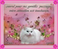 Merci pour vos messages---bisous de Lynea