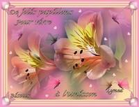 De jolis papillons pour vivre à l'Unisson-Bisous de Lynea