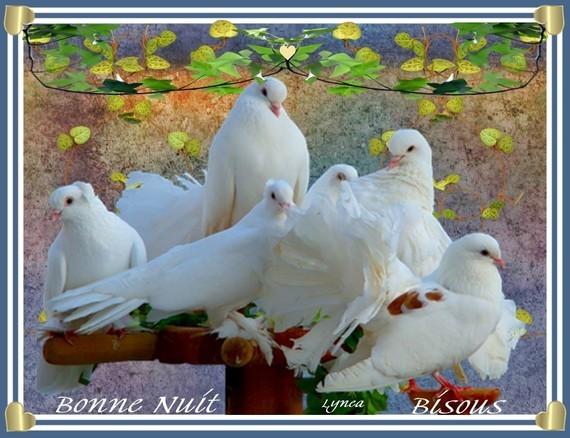 Bonne nuit-Bisous de Lynea