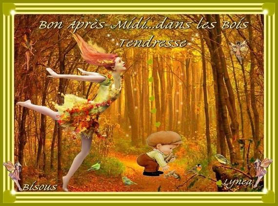 Bel après-midi d'automne dans les bois- Tendresse, bisous de Lynea