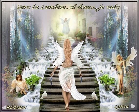 Vers la lumière je vais-Bisous de Lynea