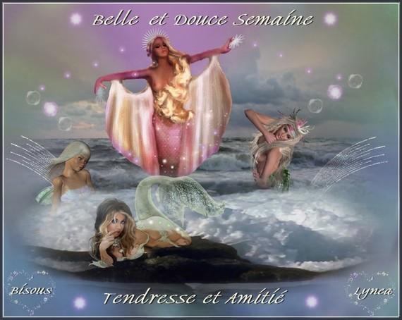 Belle et Douce Semaine-Tendresse-Amitié et bisous de Lynea