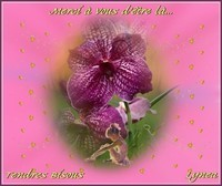 Merci d'être là---tendres bisous de Lynea