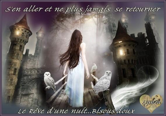 S'en aller et ne plus jamais se retourner-Le rêve d'une nuit---bisous doux de Lynea