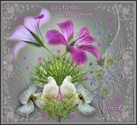 Merci du Coeur-Lynea
