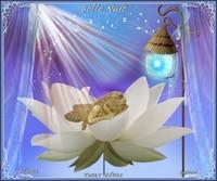 Belle nuit-Doux rêves -bisous de Lynea