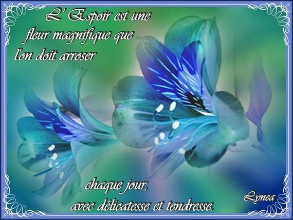 Espoir est une fleur magnifique que l'on doit arroser chaque jour avec délicatesse et tendresse-Lyne