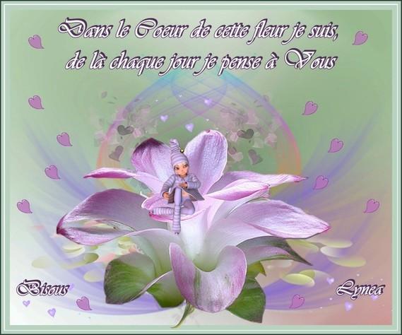 Dans le coeur de cette fleur je pense à vous-Bisous de Lynea
