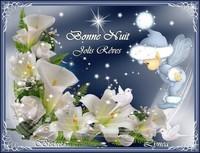 Bonne nuit-Jolis Rêves-Bisous de Lynea