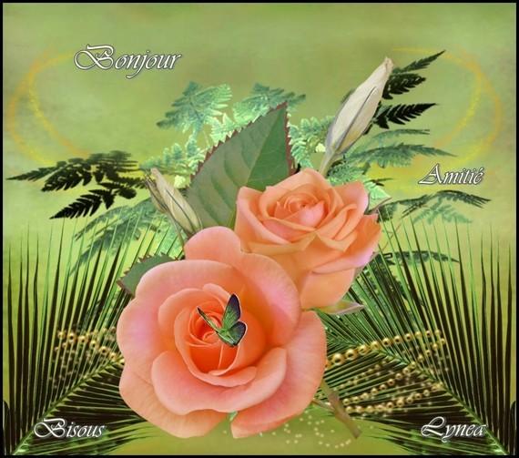 Bonjour-Bisous-Amitié de Lynea