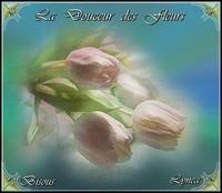 Douceur des fleurs bisous de Lynea