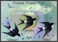 Cordialité Respect Paix Tolérance Gentillesse Politesse les oiseaux de Lynea