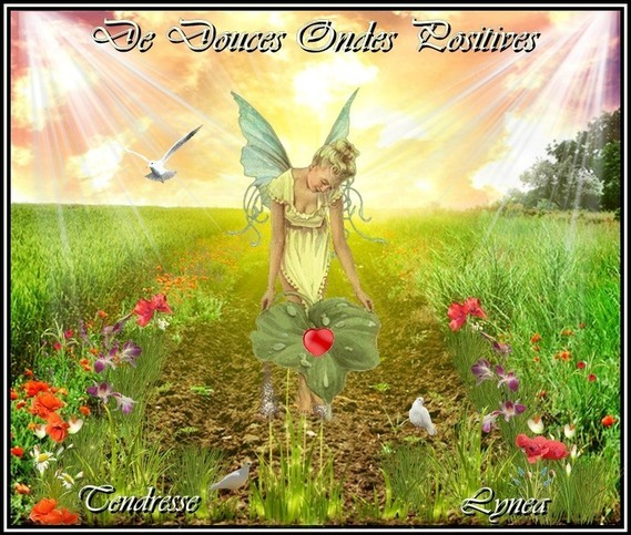 Douces ondes positives tendresse de Lynea