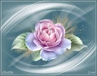 Amitié rose de Lynea