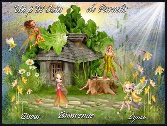 Un ptit coin de paradis bisous bienvenue de Lynea