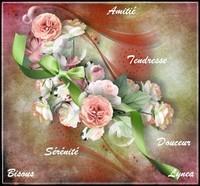 Amitié tendresse douceur sérénité bisous de Lynea