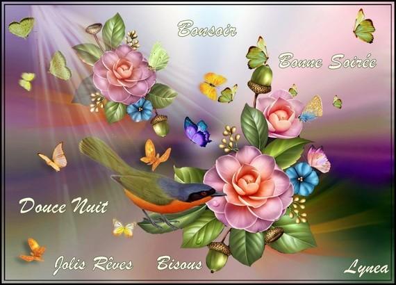 Bonsoir bonne soirée douce nuit jolis rêves bisous de Lynea