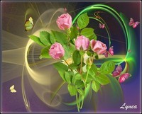 Roses roses papillons de Lynea