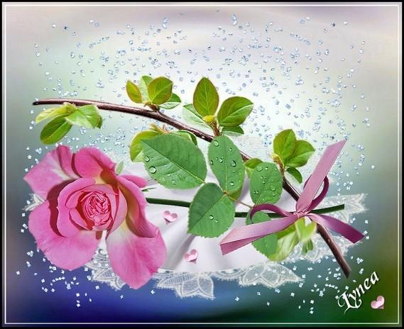 fleur rose de Lynea