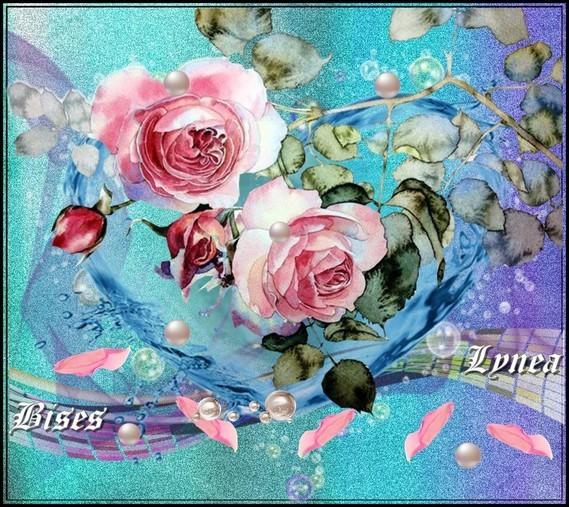 Les roses bises de Lynea