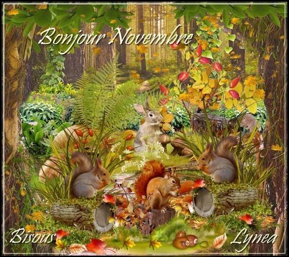 Bonjour Novembre bisous de Lynea