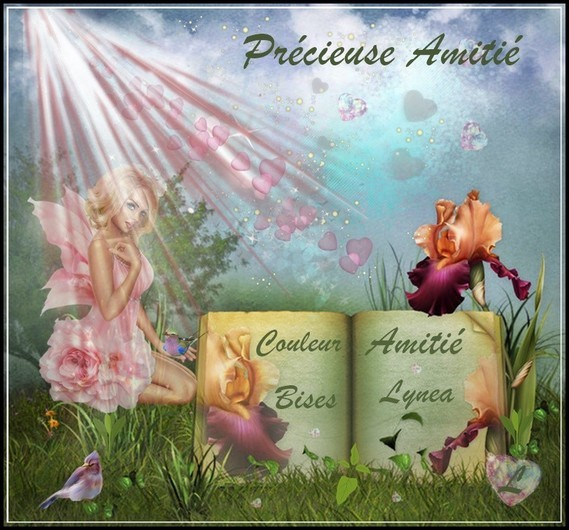 Précieuse amitié-Livre Lynea