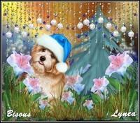 Bisous de Lynea