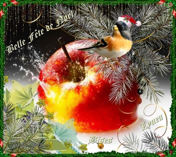 Bonne fête de Noël bises de Lynea